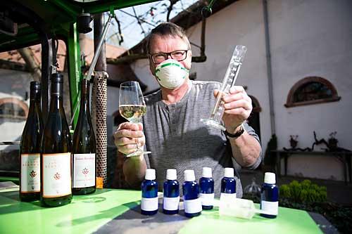 Biowinzer Bernd Pflüger mit dem Riesling-Desinfektionsmittel.